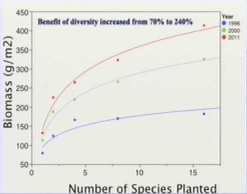 productivitatea creste cu biodiversitatea